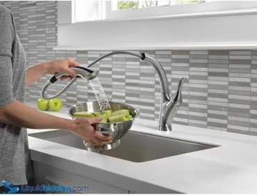 LiquidBidding | Delta Linden Pull-Out Sprayer Kitchen...