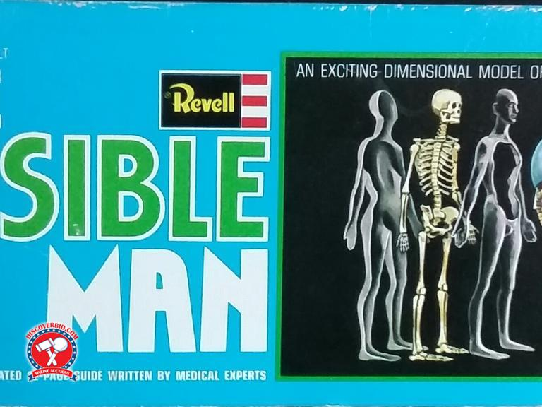Discoverbid Revell The Visible Man A Dimensional Model Of